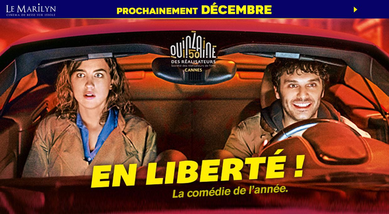 Photo du film En liberté !