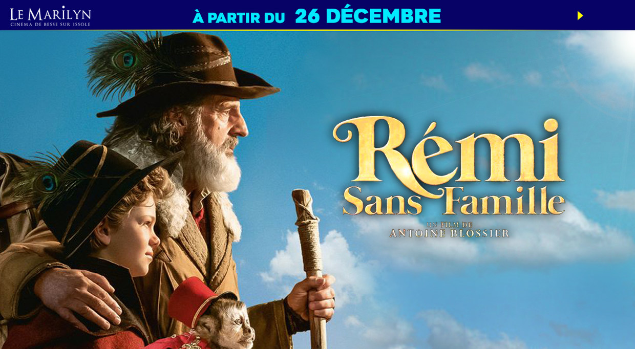 Photo du film Rémi sans famille