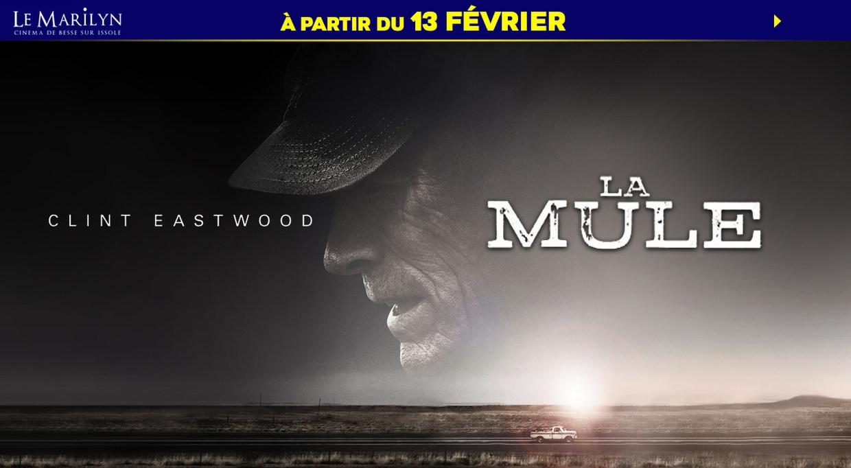 Photo du film La Mule