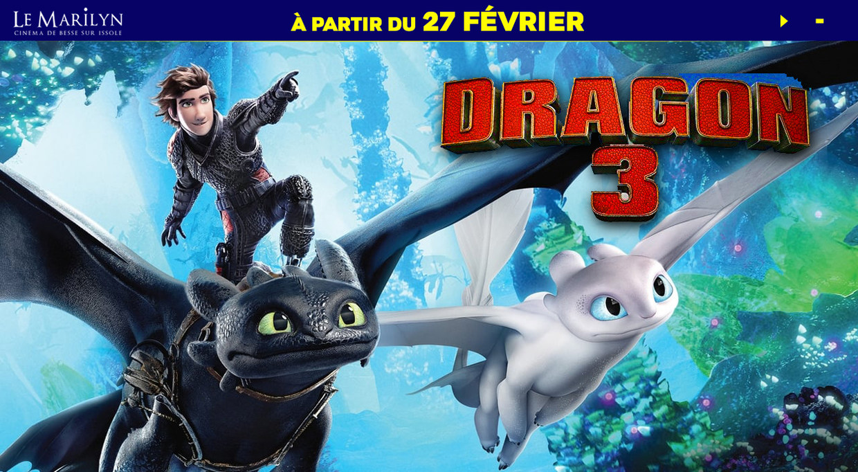 Photo du film Dragons 3 : Le monde caché