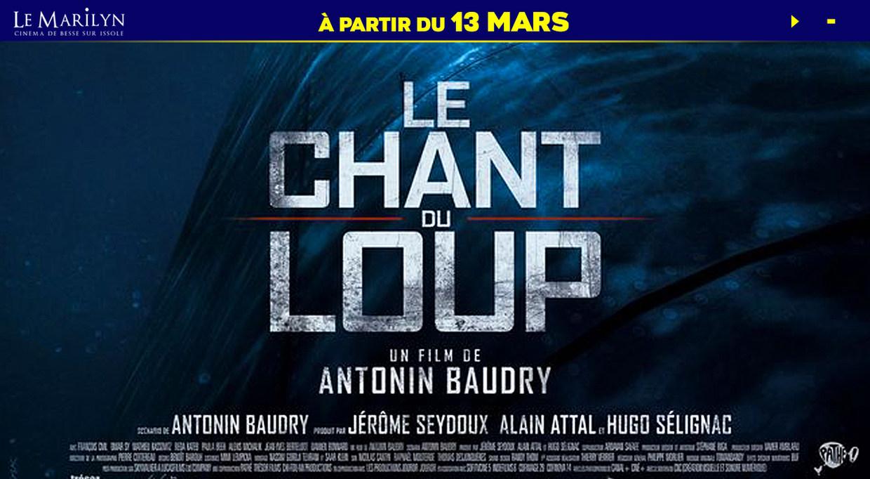 Photo du film Le Chant du loup