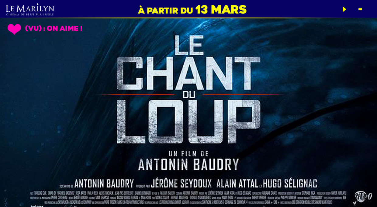 Photo du film Le Chant du loup