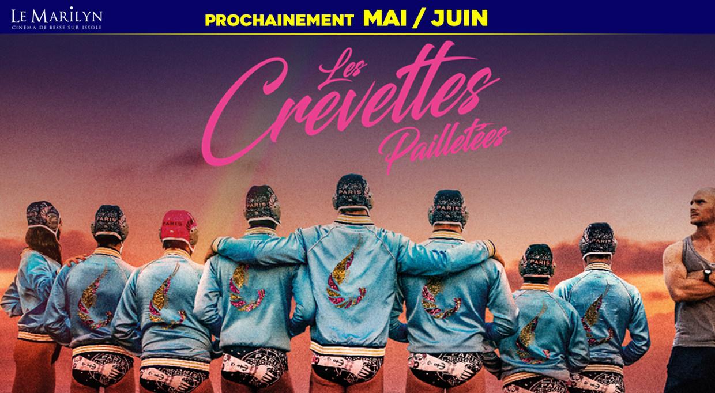 Photo du film Les Crevettes pailletées