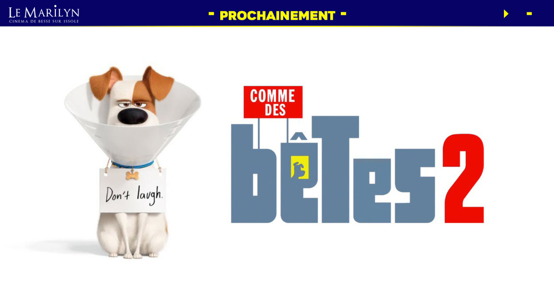 Photo du film Comme des bêtes 2