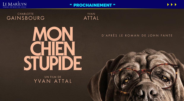 Photo du film Mon chien Stupide