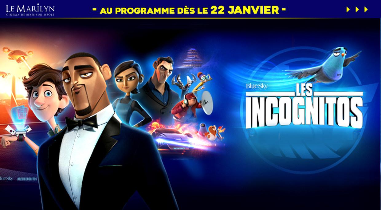 Photo du film Les Incognitos