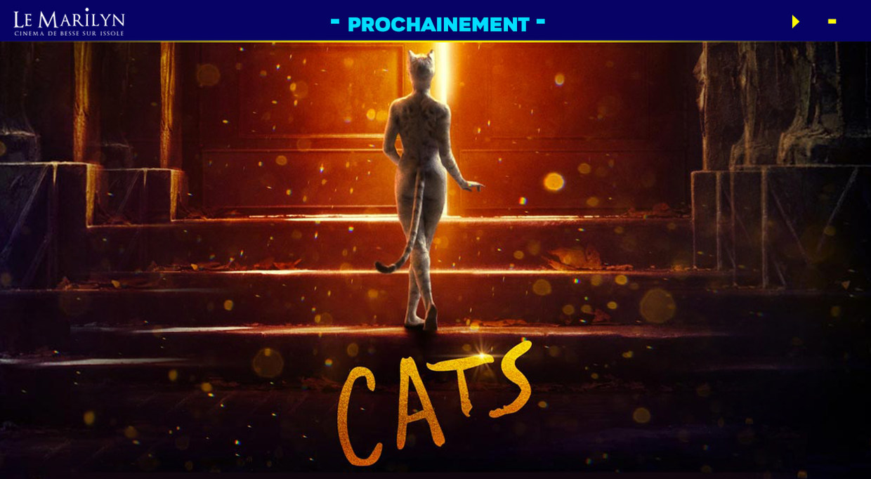 Photo du film Cats