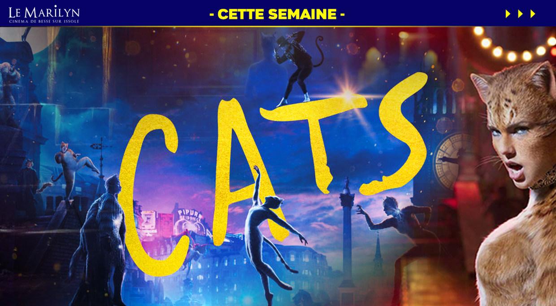Photo du film Cats