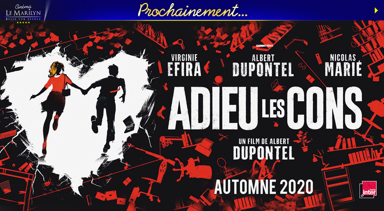 Photo du film Adieu Les Cons