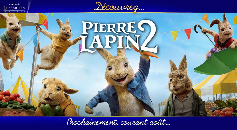 Photo du film Pierre Lapin 2